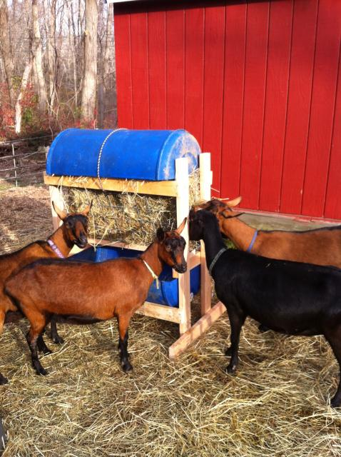 Hay Feeder Plans http://thesawyerfarms.com/recycling/
